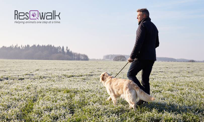Download the ResQwalk app on your phone and raise money